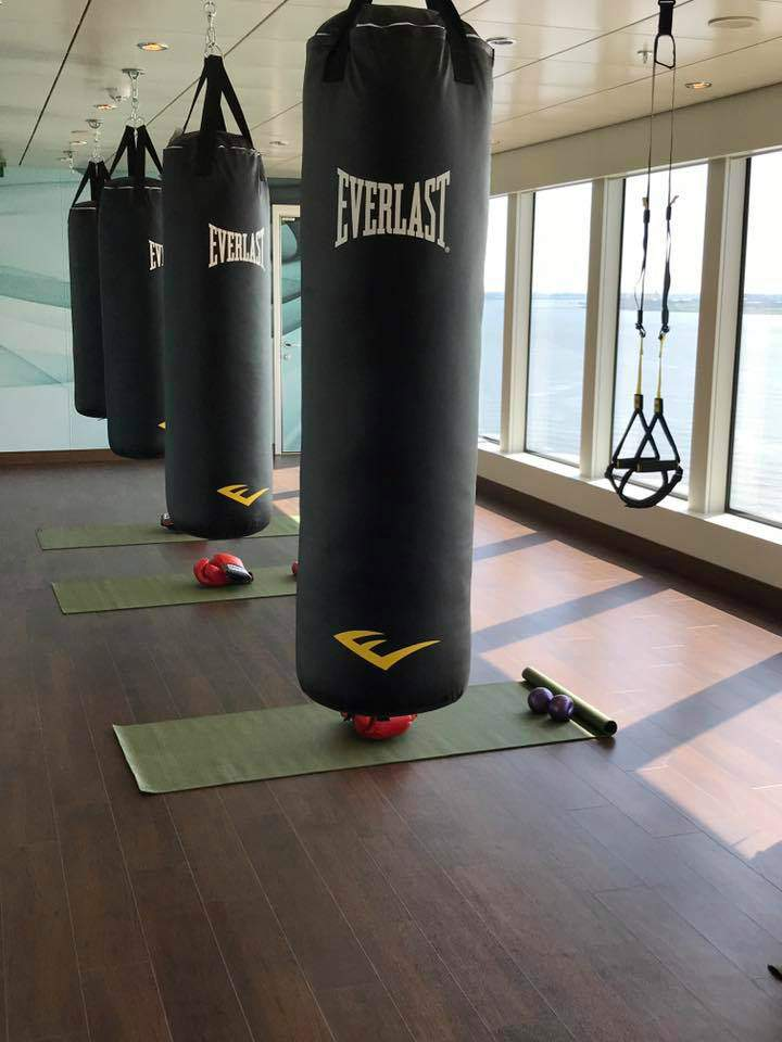 Fitness Centre and a row of Everlast punch bags