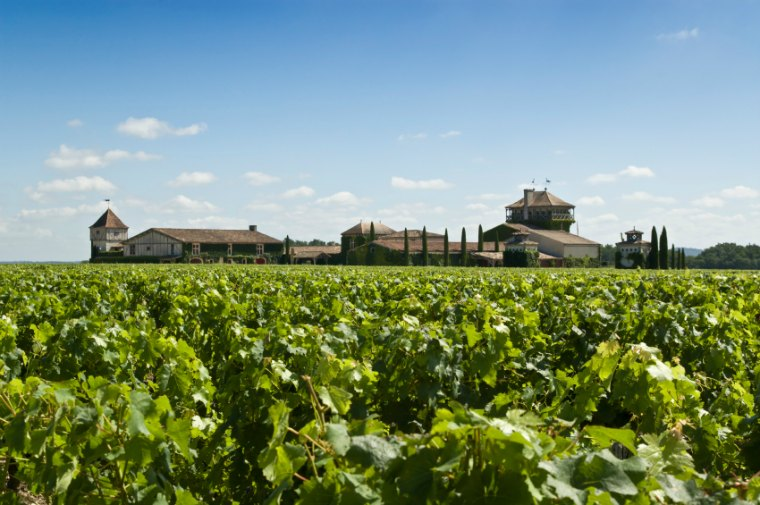 wine tasting classes with a master sommelier