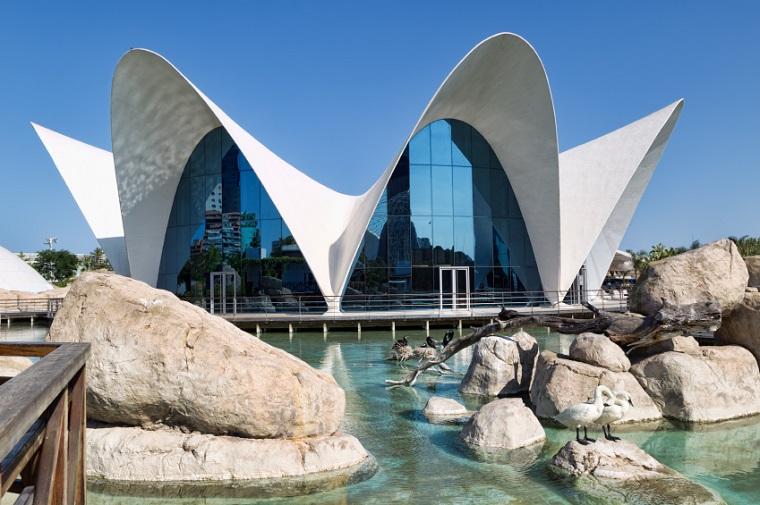 Family-Friendly Excursions - Oceanographic City – Valencia