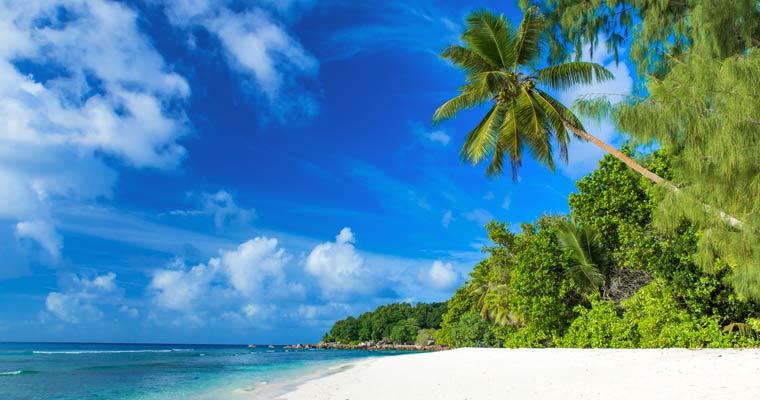 Ultimate Movie Cruise Bahamas