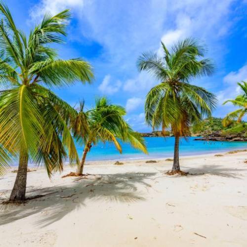 Caribbean island, Antigua Cruise Holidays