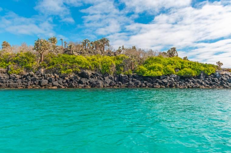 Galapagos Islands National Park landscape