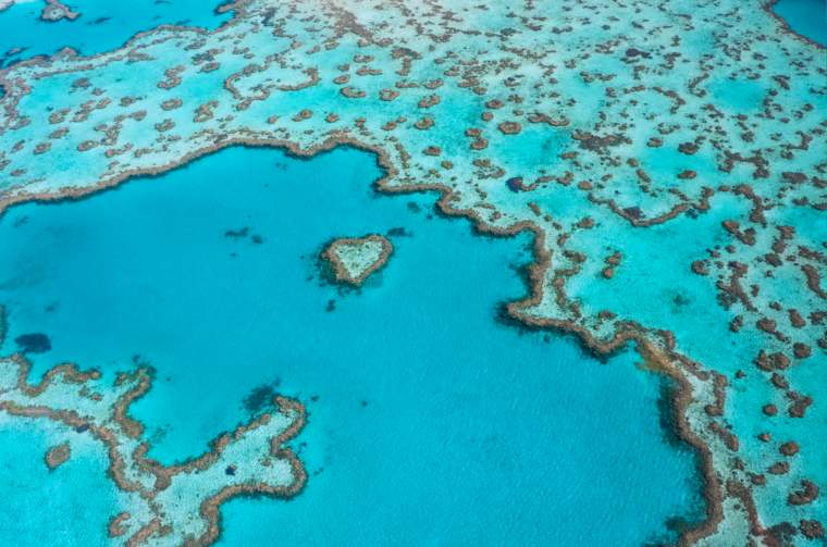 Heart Reef at the Great Barrier Reef, Whitsundays Queensland
