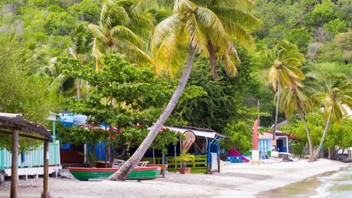 Arvia's Caribbean: Shore Guide To Martinique