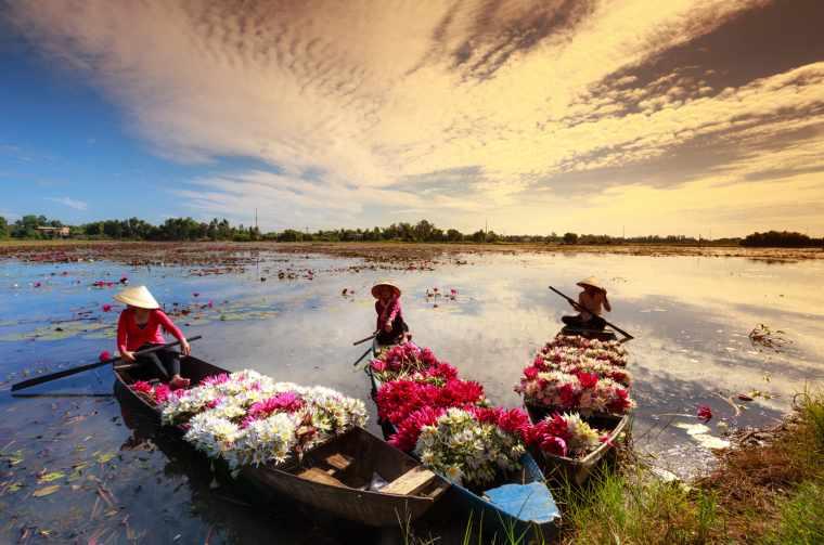 Moc Hoa District, Long An Province, Vietnam