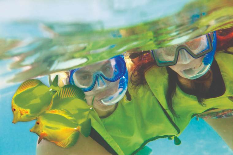 Snorkelling in Great Stirrup Cay