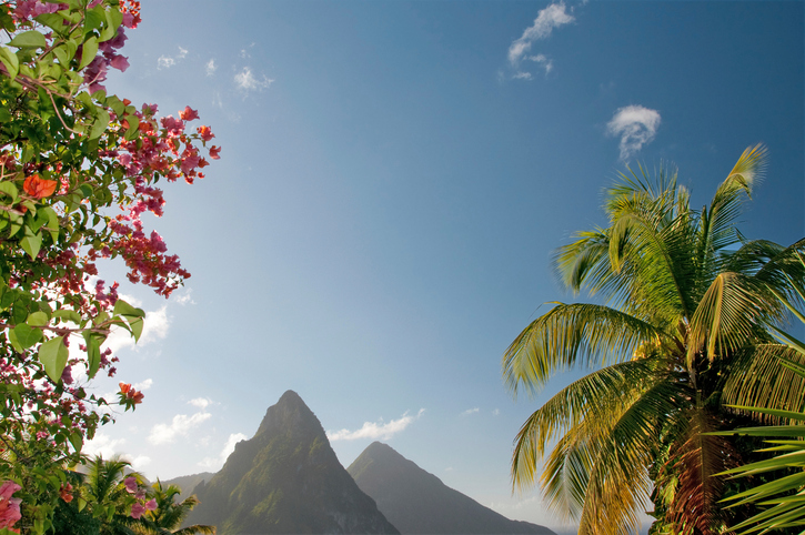 View of St. Lucia's Twin Pitons seen through lush foliage.