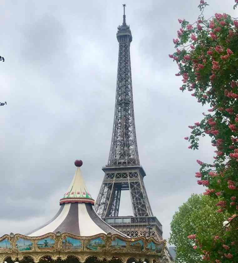 View of the Eiffel Tower from afar