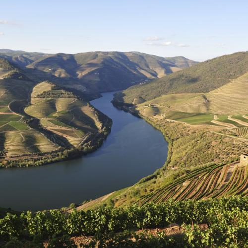 Douro_Landscape