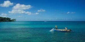 Arvia, Barbados